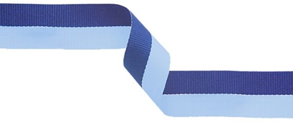 navy and light blue ribbon