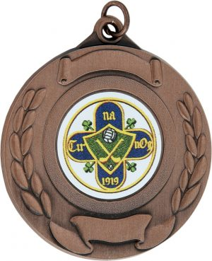 bronze medal, hurling