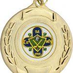 gold medal, hurling, gaelic football