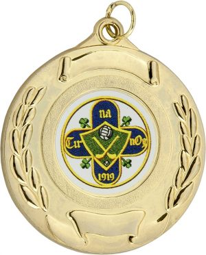 gold medal, hurling, gaelic football