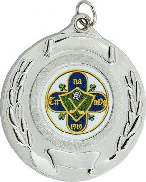silver medal, hurling