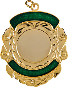 gold shield medal, green trim