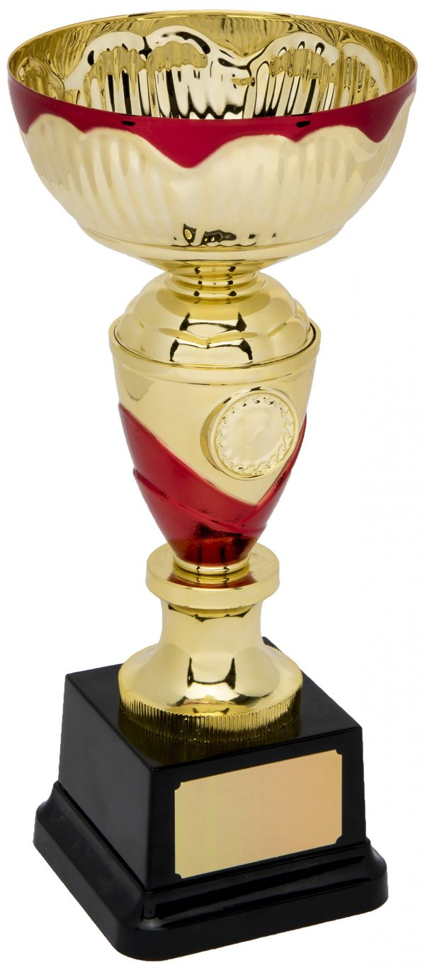 gold and red trophy bowl