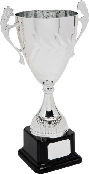 F433-106 37cm CUP