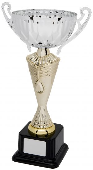 gold and silver cup trophy