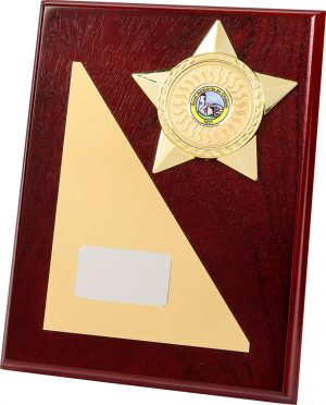 Wooden Plaque, gold star