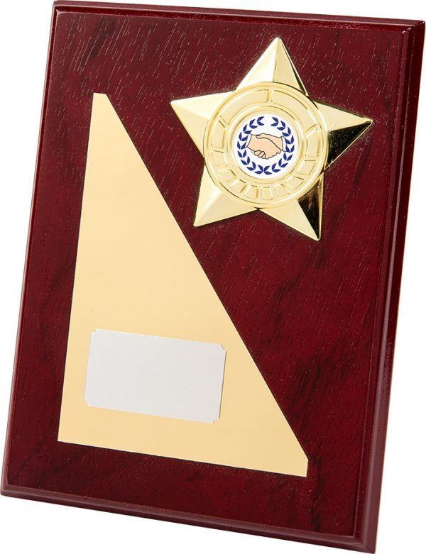 Wooden Plaque, gold plate, gold star