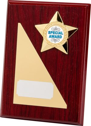 rectangle wood plaque, gold star