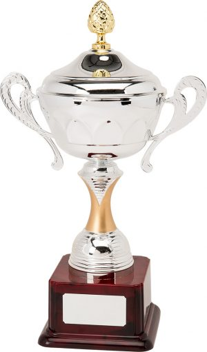 H893-110 42.5cm Quality Presentation Cups