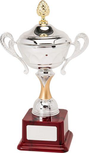 H894-110 38cm Quality Presentation Cups
