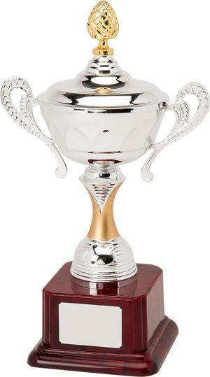 H895-110 33.5cm Quality Presentation Cups