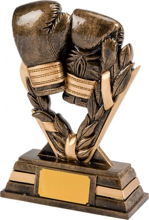 boxing gloves, trophy, award