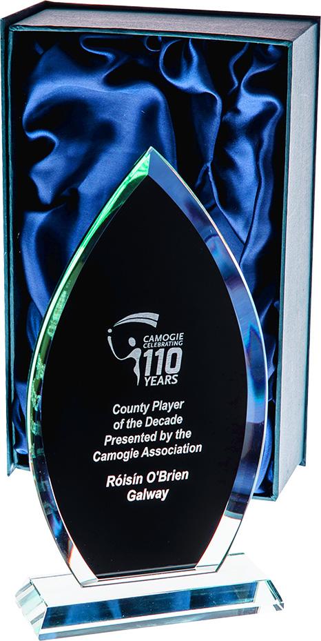 Jade Glass with Black award